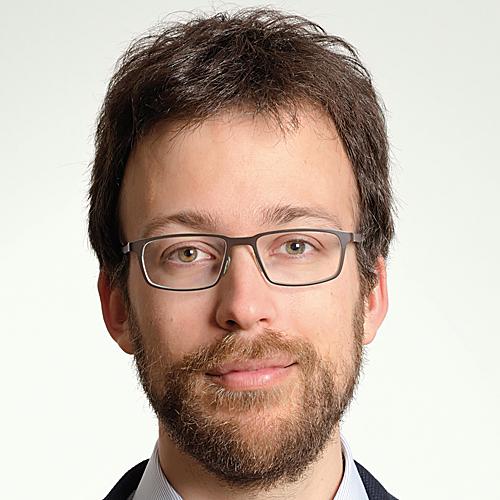 Prof. Dr. Stefano Mintchev